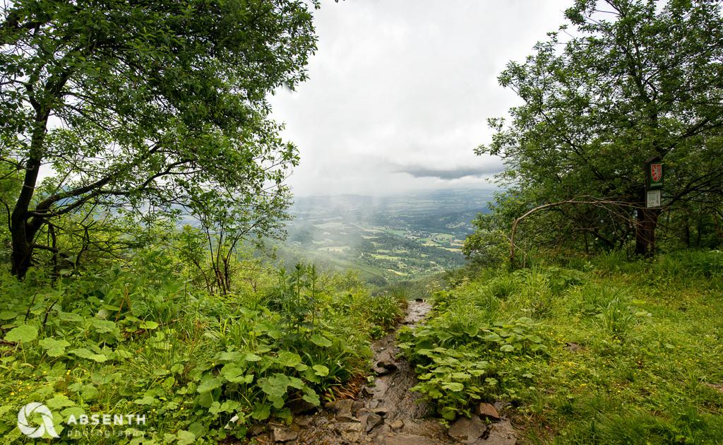 Bucaci Potok, Czech Republic.